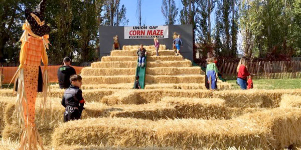 Union Gap Corn Maze & Pumpkin Patch